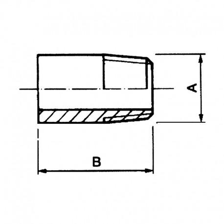 Embout mâle NPT SCH 80 - 316L