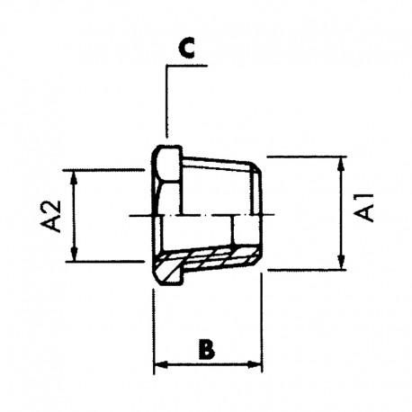 Réduction Hexagonale male - femelle NPT