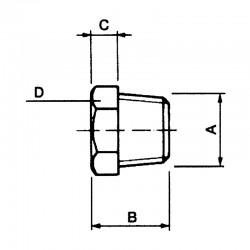 Bouchon mâle tête H NPT - 316L